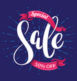 special sale lettering banner vector image