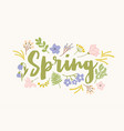 spring word handwritten with elegant cursive vector image
