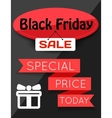 Black Friday Sale flayer vector image vector image