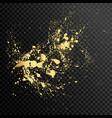 set gold splash on black background vector image