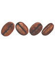 watercolor coffee beans vector image vector image
