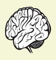 brain2 vector image vector image