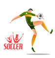football championship cup soccer sports background vector image vector image