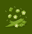 fresh vegetable ladies finger or okra falling in vector image vector image