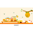 honey products flat organic vector image vector image
