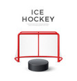 ice hockey goal with net 3d puck vector image vector image