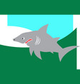 jaws great white shark vector image