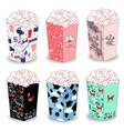 popcorn bucket boxes design vector image vector image