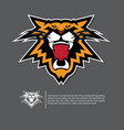 angry tiger face logo in flat design vector image vector image