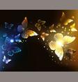 contrasting night butterflies vector image vector image