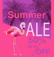 flamingo summer sale card violet and pink vector image