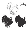 hand drawn turkey bird set vector image vector image