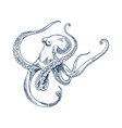 octopus seafood monochrome vector image vector image
