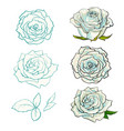 rose buds set with summertime flowers in light vector image vector image