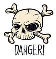 skull1 vector image vector image
