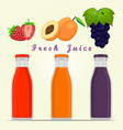 the set fruits vector image
