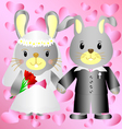 Cartoon bunnies bride and groom vector image