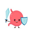 cute strong happy smiling healthy stomach vector image vector image