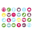Human internal organs icons vector image
