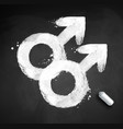 male gender symbol of homosexuality vector image vector image