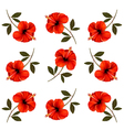 pattern beautiful red flowers vector image