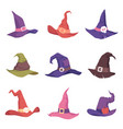 set colorful witch hats vector image vector image