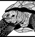 Turtle animal head symbol for mascot vector image vector image
