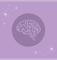 white human brain side view vector image vector image