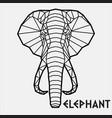 abstract polygonal geometric head a elephant vector image