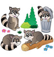 cartoon racoons collection vector image
