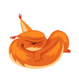 cute sleeping squirrel funny little orange rodent vector image vector image