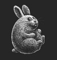 hand drawn cartoon easter bunny on black vector image vector image