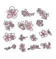 japanese sakura buds set cherry blossom flowers vector image vector image