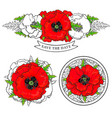 red poppy decorative elements set with bright vector image