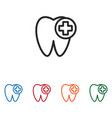 tooth and plus icon vector image