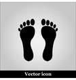 Footprints icon on grey background vector image vector image
