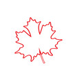 isolated textured maple tree leaf vector image vector image