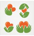love in my hands vector image vector image