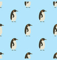 seamless pattern of penguins on blue background vector image
