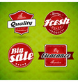 Set of red labels on green abstract background vector image vector image