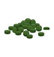 spirulina chlorophyll or chlorella tablets vector image vector image