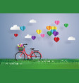bicycle in the garden with colorful hot air vector image