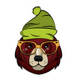 cool hipster bear vector image