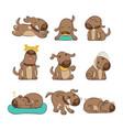 set of cartoon dog poses vector image