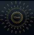 stylish golden mandala decorative design vector image