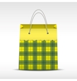 Vintage shopping bag in check texture vector image vector image
