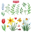 watercolor flowersgreen branches setspring vector image