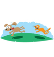 Angry Cat Hunting a Dog vector image
