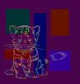 cat -5 vector image vector image