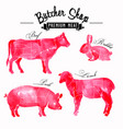 meat symbols set pork beef lamb rabbit vector image vector image